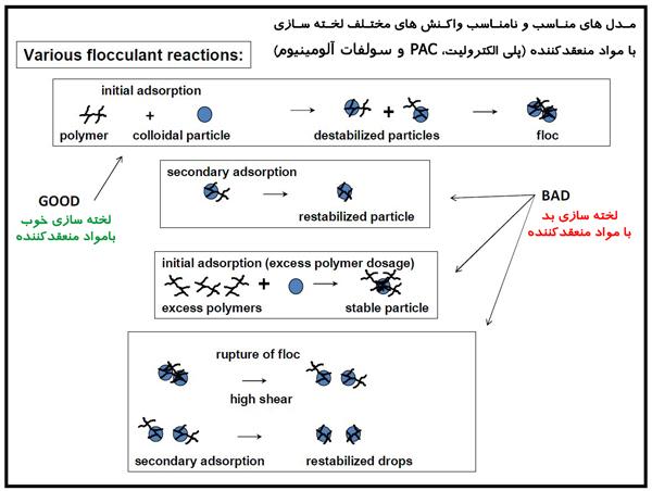 مدل های مناسب و غیرمناسب واکنش های مختلف لخته سازی با مواد منعقدکننده (پلی الکترولیت، PAC و سولفات آلومینیوم)
